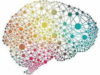 multicolor-brain-inline2